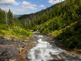 Harmonogram výzev Národního programu Životní prostředí