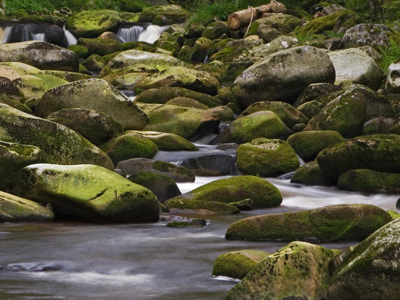 Jedna a čtvrt miliardy korun z OPŽP na prevenci proti povodním i suchu. Příjem žádostí startuje 1. listopadu