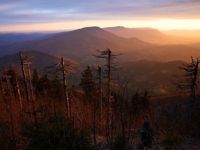2015: Klimatická změna vloni citelně zasáhla naše životní prostředí