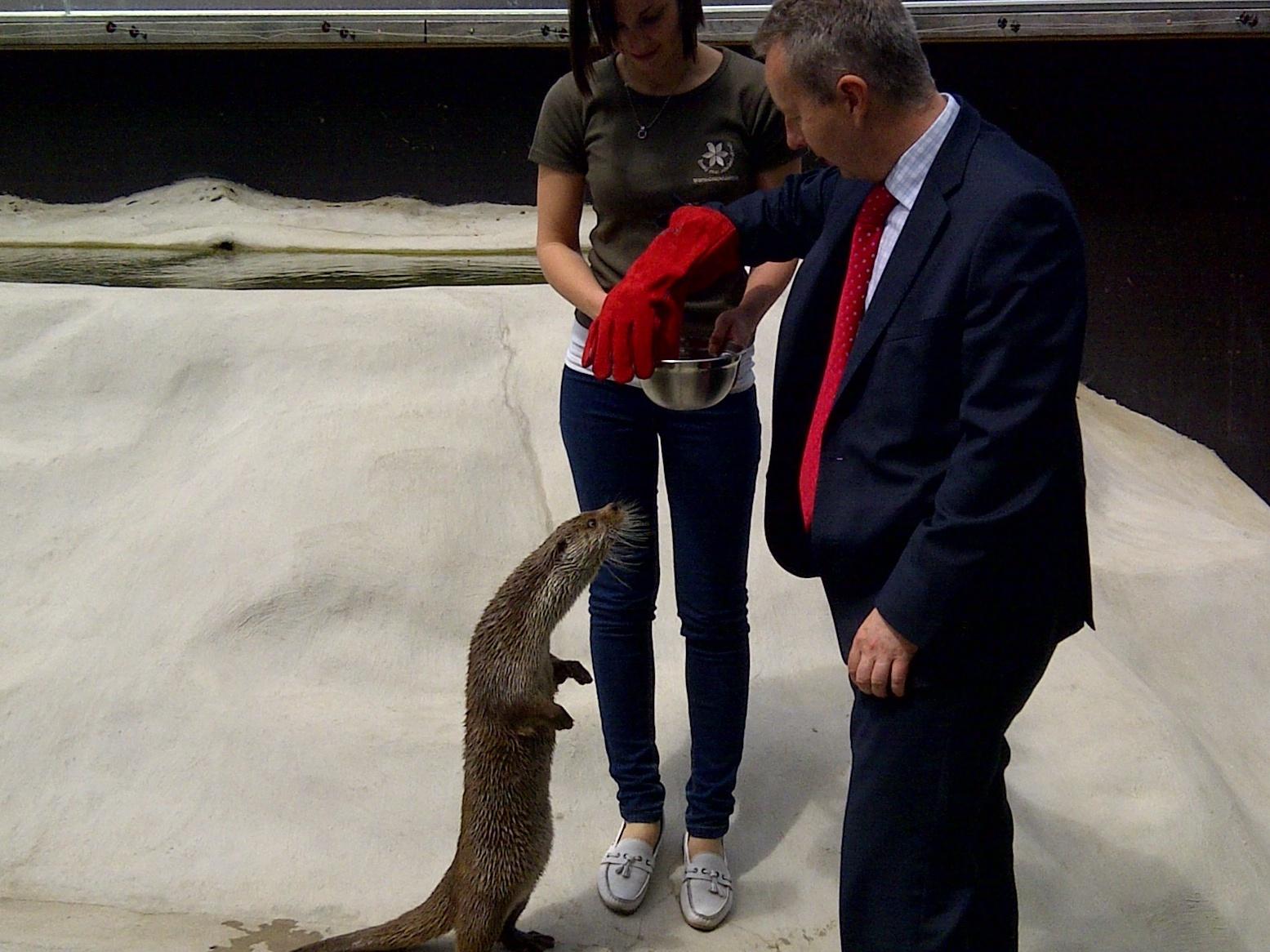 Ministr Brabec: Trávení zvířat je nelidské a trestné, přesto je to v ČR velký problém