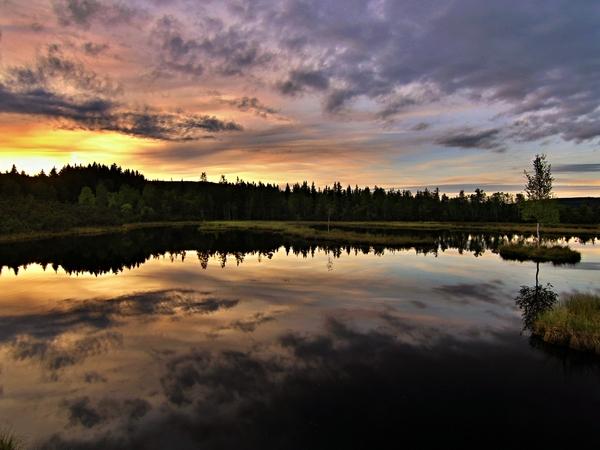 Příroda chrání před povodněmi i suchem, obohacuje i inspiruje. Vyfoťte to a své úlovky posílejte do fotosoutěže NATURE@work