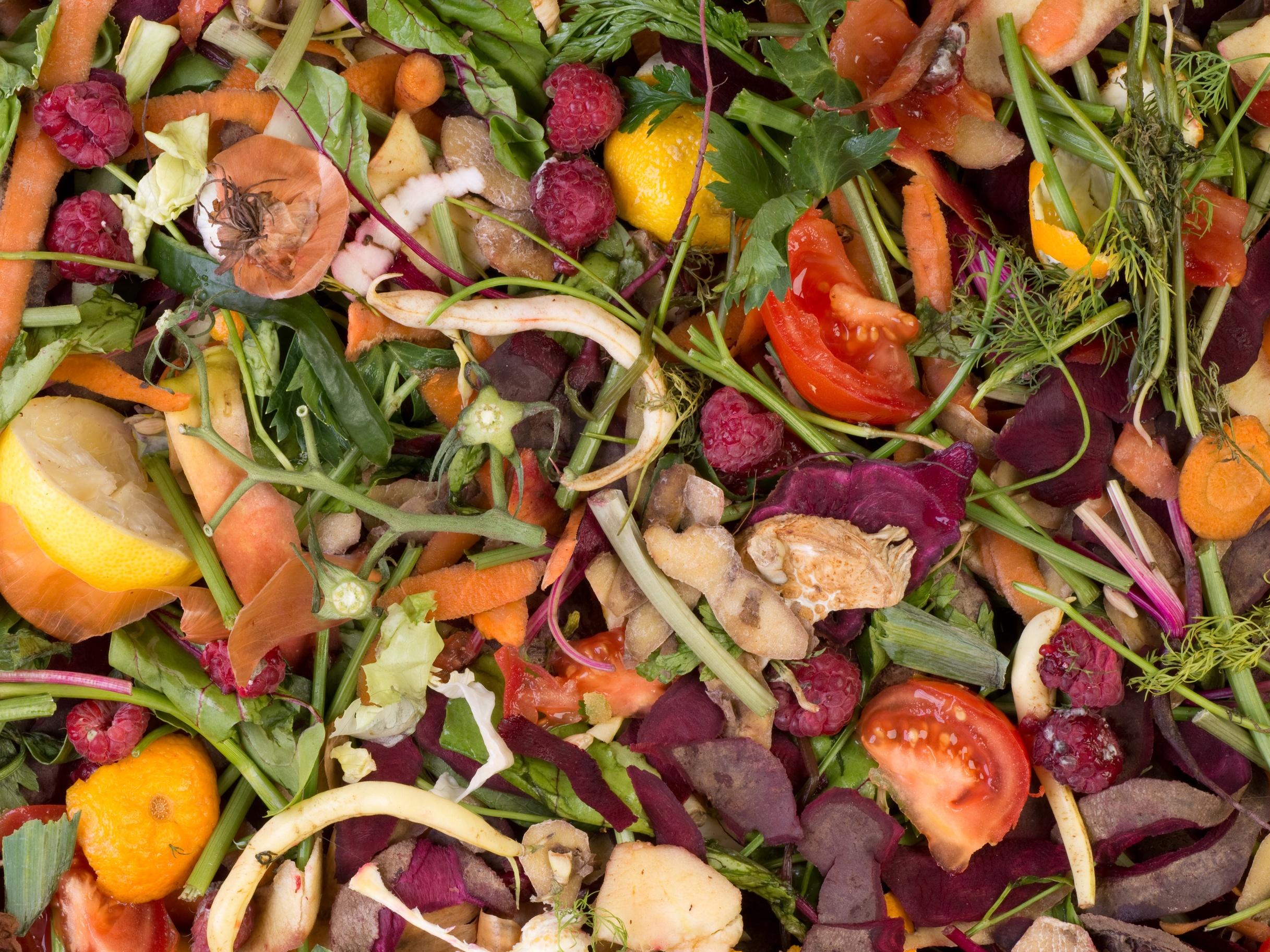 Na pořízení kompostérů schválilo ministerstvo téměř 300 milionů