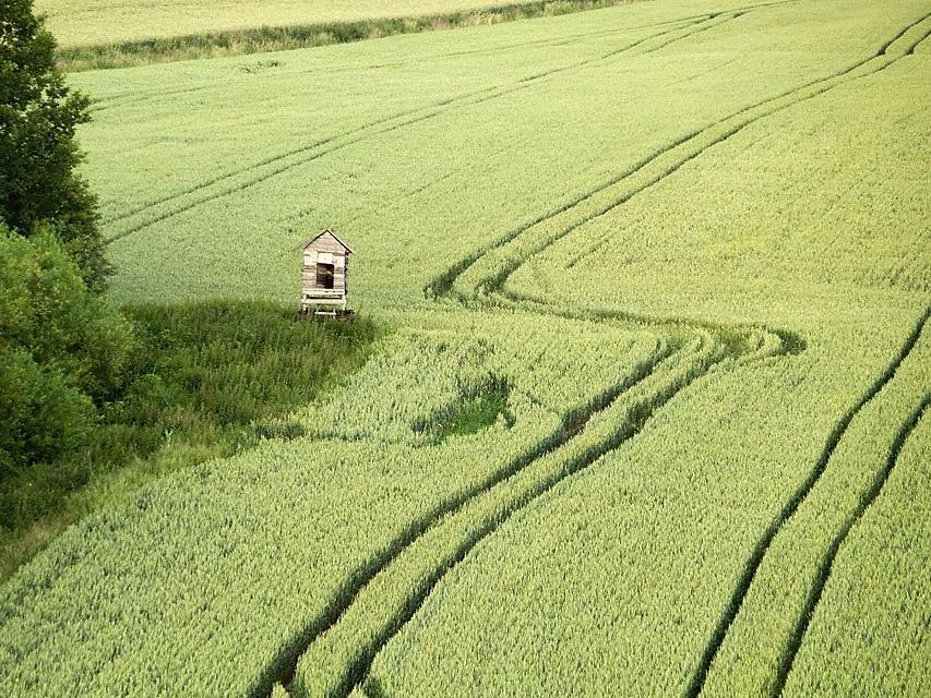 Soukromí zemědělci vnímají riziko vodní eroze pro půdu v ČR, podporují proto protierozní vyhlášku MŽP