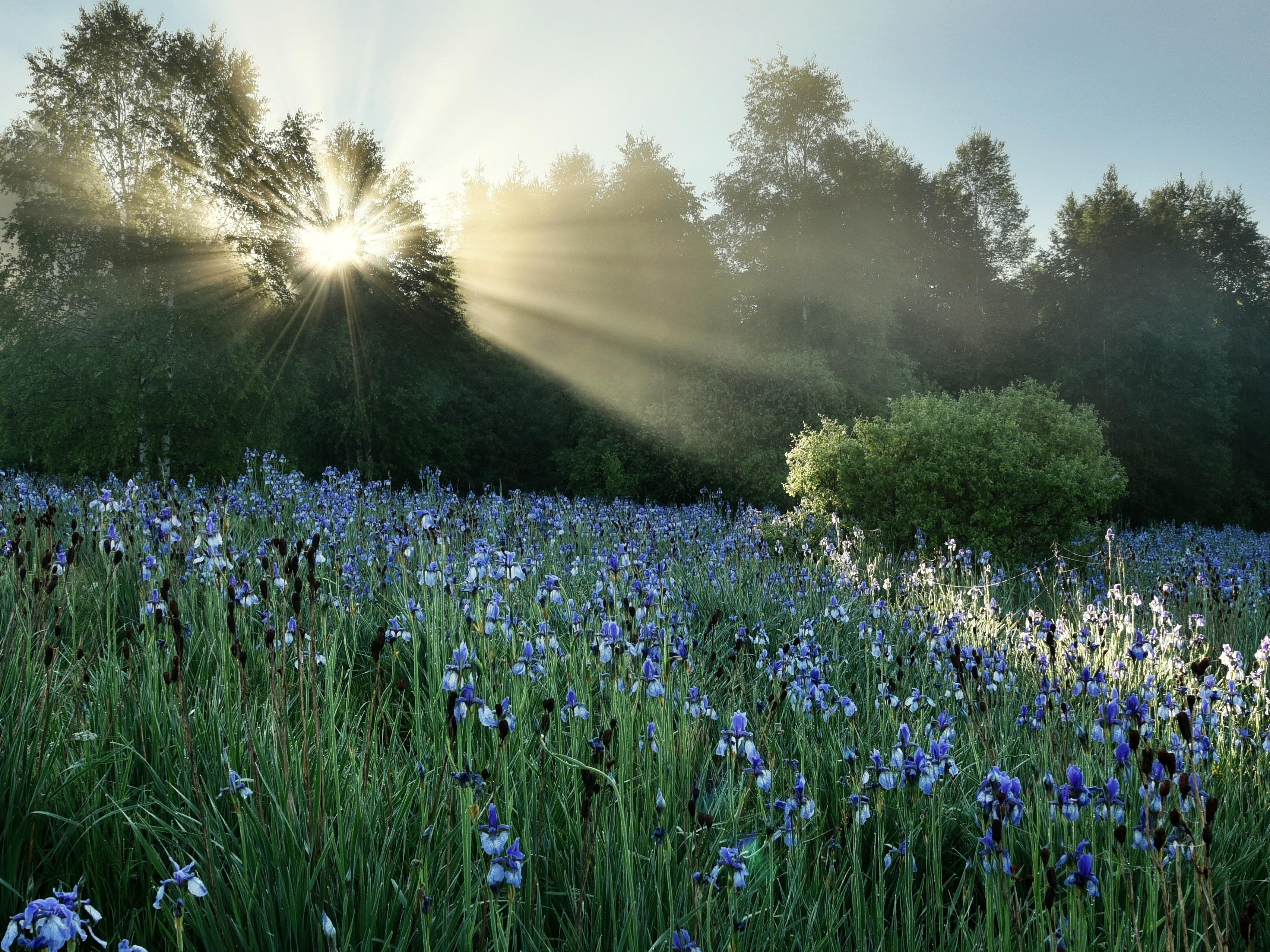 Další ročník fotosoutěže MMM: Foťte chráněnou českou přírodu a vyhrajte pobyt v národním parku!