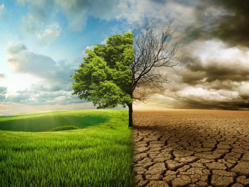 Světový den boje proti suchu a rozšiřování pouští