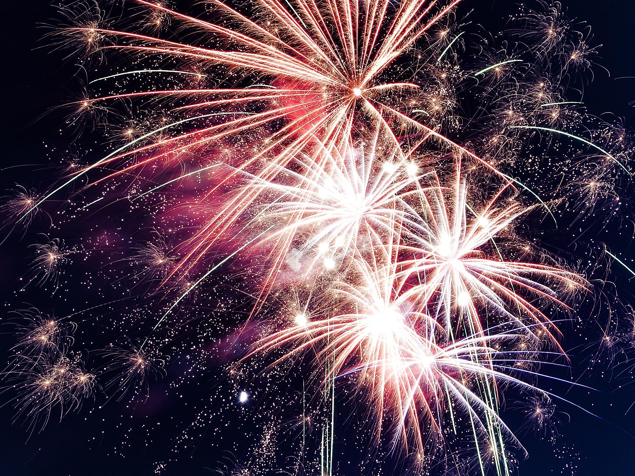 Oslavy Silvestra a Nového roku v národních parcích opět bez ohňostrojů