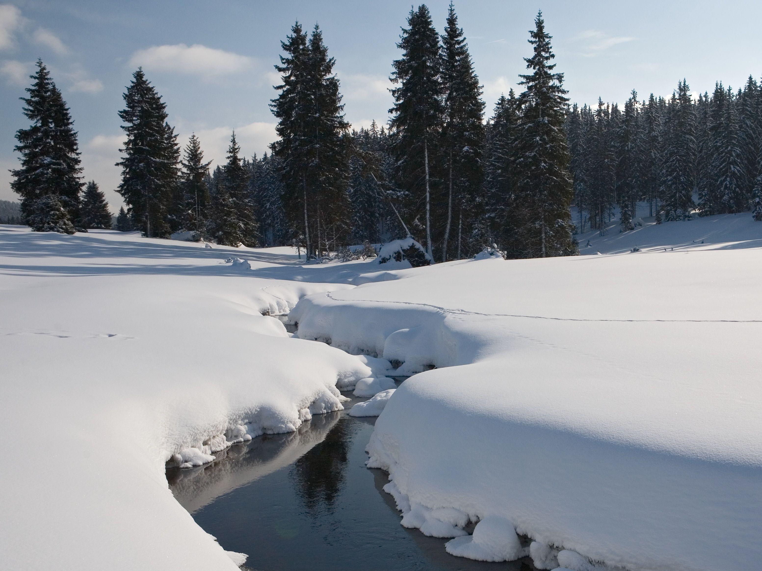 Ministerstvo odstartovalo první integrovaný projekt LIFE zaměřený na evropsky chráněná území
