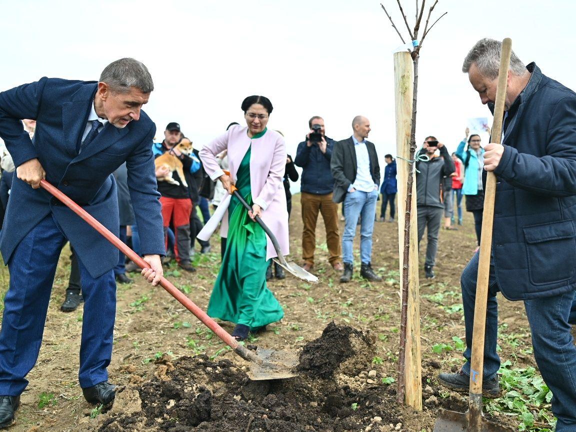 """Naše budoucnost je bohatší o dalších 150 stromů na podporu projektu """"Sázíme budoucnost"""" a k poctě Mahátmy Gándhího"""