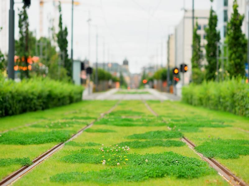 """Dotační výzva """"Oslo"""" nabízí 26 milionů korun na adaptační strategie"""