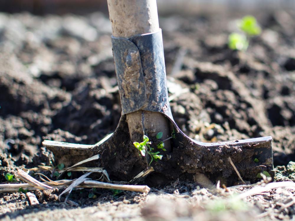 Kdo správně třídí biologicky rozložitelný odpad a kompostuje, bojuje proti suchu