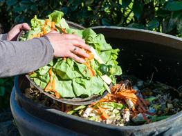 Ministerstvo životního prostředí nabízí slibované dotace (nejen) na třídění bioodpadu. SFŽP ode dneška přijímá žádosti