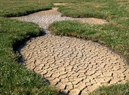 """Reakce MŽP na páteční článek MFD """"Účet za vodu v bazénu vyletí o tisíce"""""""
