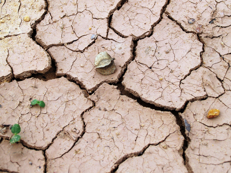 Ministr Brabec předložil spolu s MZe vládě aktuální informace o suchu v ČR i o pomoci k jeho zvládání. A svolává setkání skupin, které se věnují projektům v oblasti sucha, i komisi VODA-SUCHO