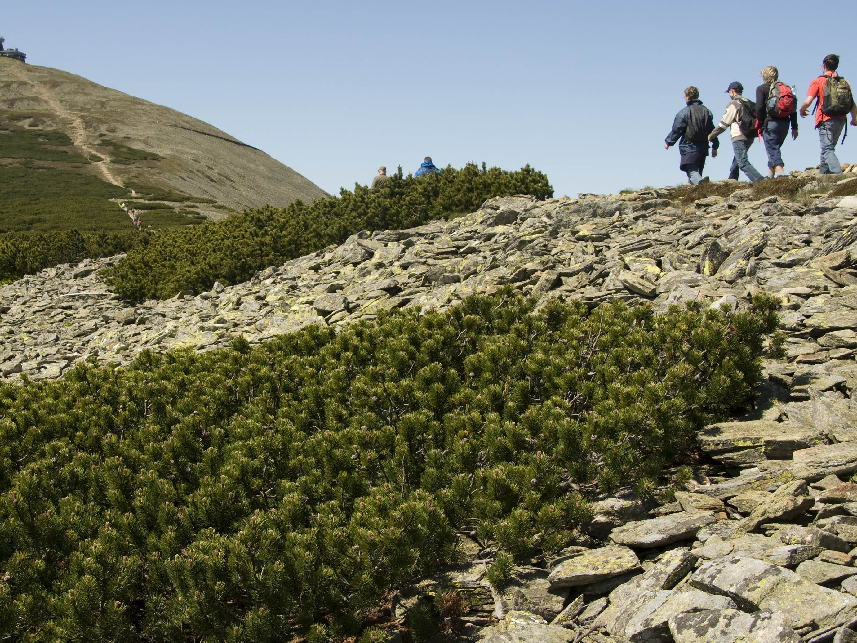 Obce v národních parcích mají další šanci investovat do svého rozvoje, MŽP je podpoří 100 miliony