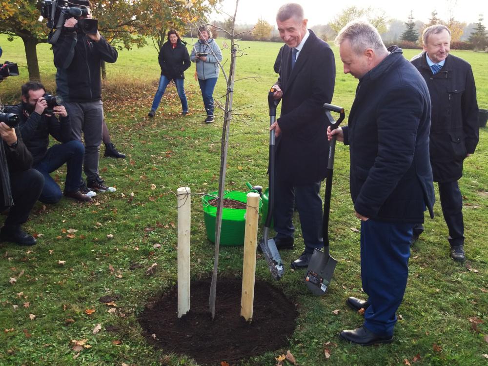 Stezka sucha v Průhonicích pomáhá najít správné stromy do vyprahlých měst