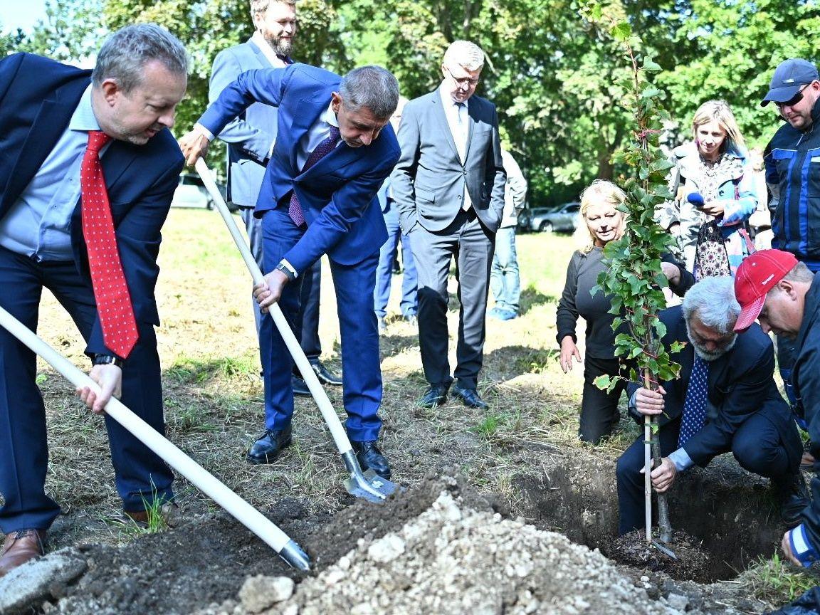 #sazimebudoucnost: Vláda dnes vysadila lípy v Horním Jiřetíně