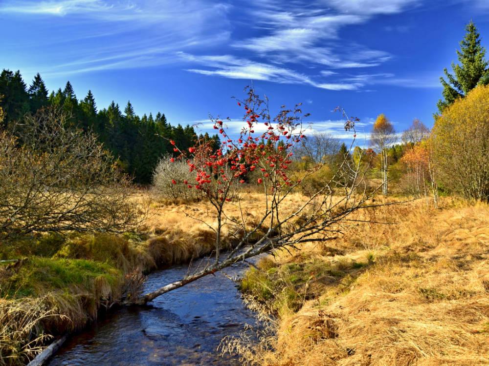 Na prohlubující se změnu klimatu reaguje Státní politika životního prostředí ČR 2021-2030