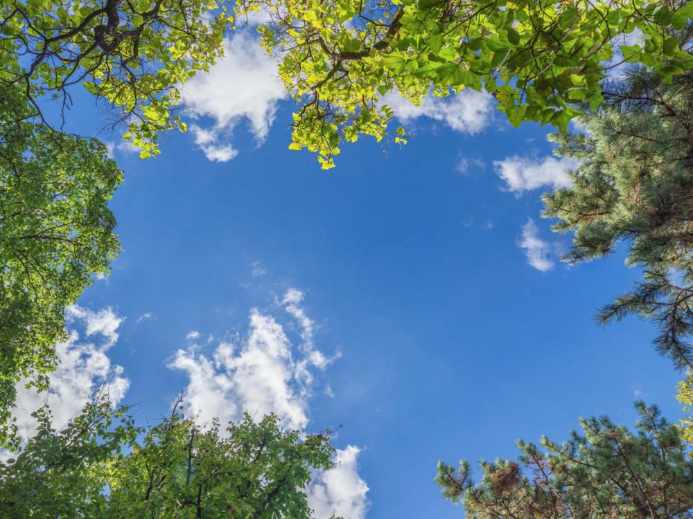 Adaptace České republiky na změnu klimatu: MŽP dnes předložilo vládě první aktualizaci strategických materiálů