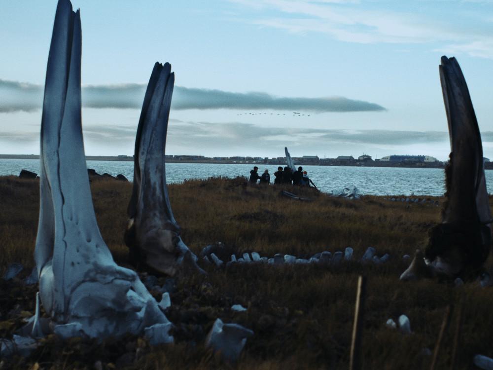 Vítězem 47. MFF EKOFILM je polský film Velryba z Lorina
